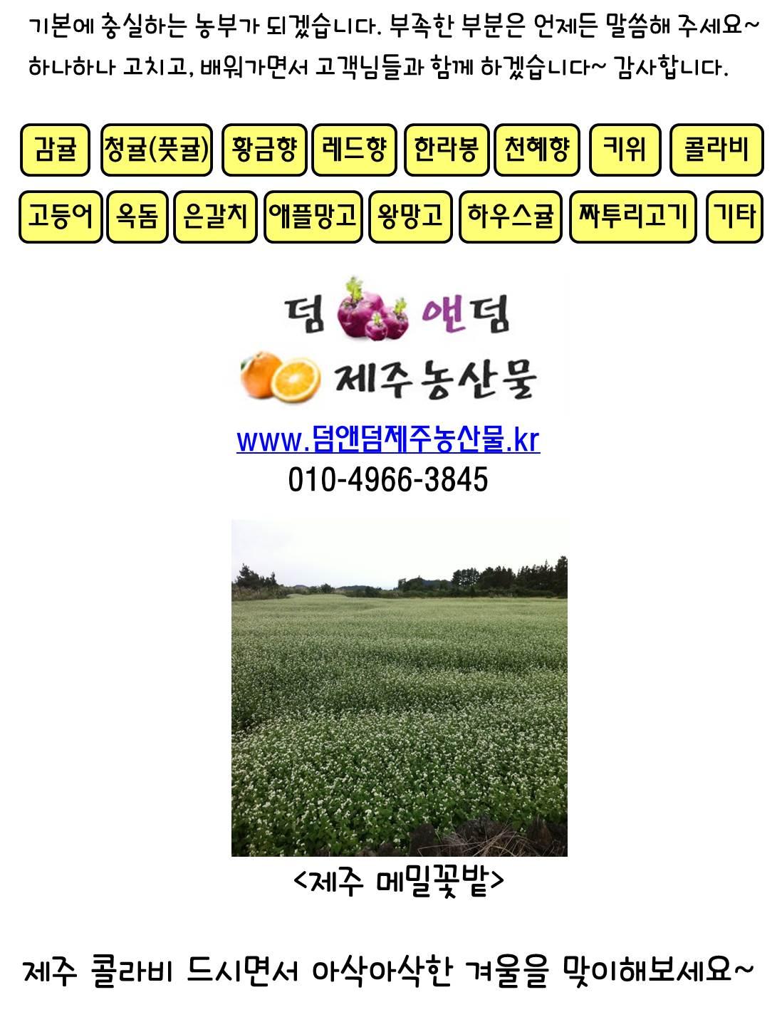 613f828d61fefba6711038eaf88c64c0.jpg